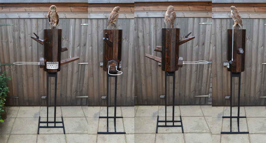 the owl theremin